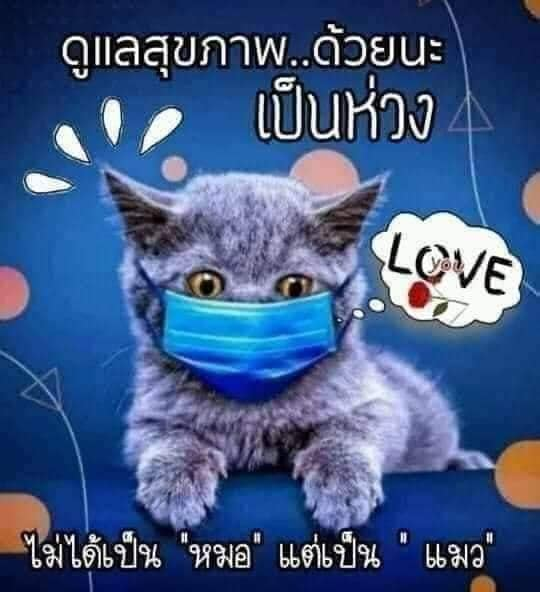 Photos from 4lifethaicare4u's post
