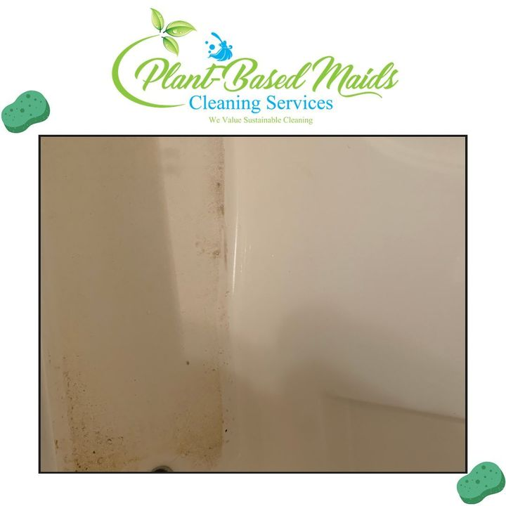 Photos from Plant-Based Maids LLC's post